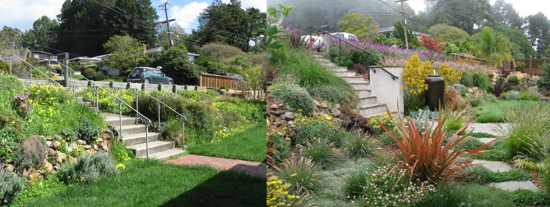 Landscaping Ideas for Hillside Backyard