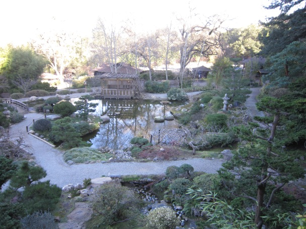 view of pond from above
