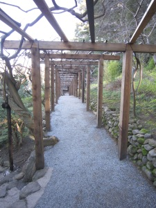 Deciduous wisteria vines cover this arbor walkway and will erupt in purple blossoms in spring