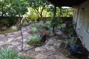 Backyard Before