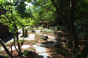 Meandering Paths of a Japanese Influenced Garden