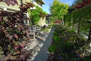 Japanese Inspired Front Garden