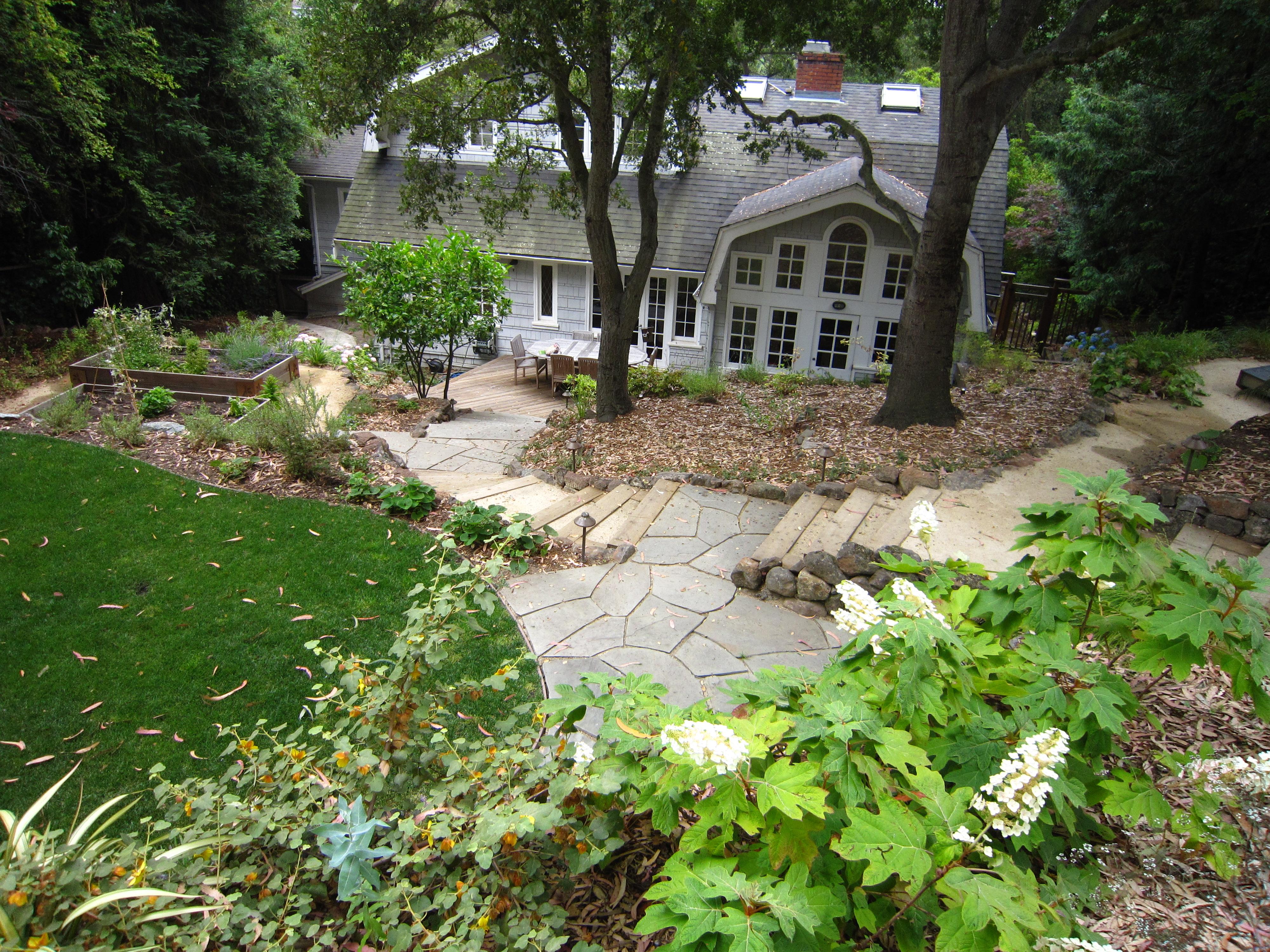 Oakland sloped garden lazar landscape for Oakland landscape design