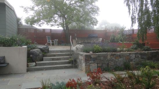 Kitchen garden - after